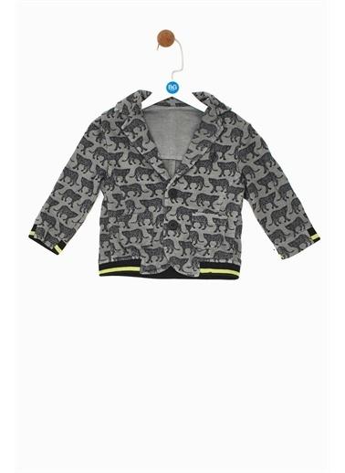 BG Baby Erkek Bebek Desenli Ceket Renkli